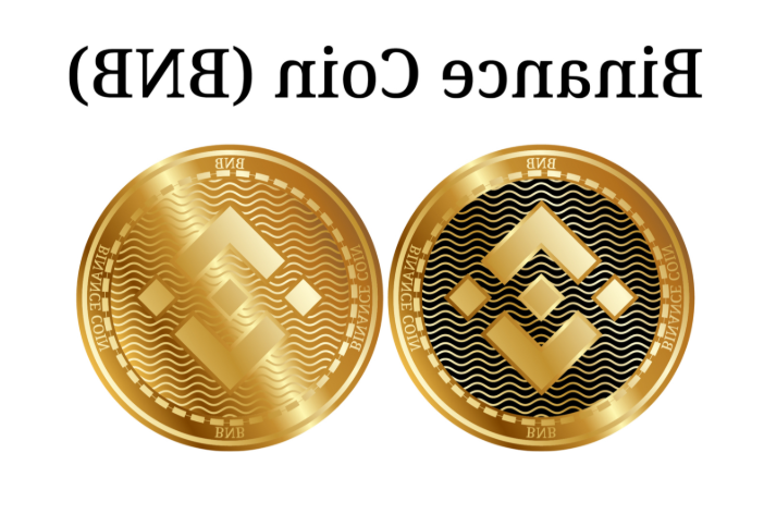 An overview of the Binance Coin